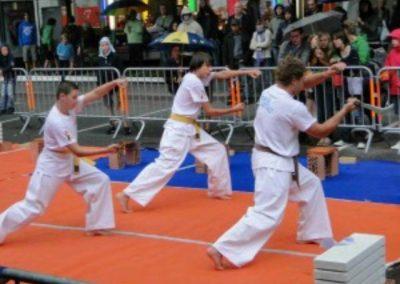 Judo demonstratie